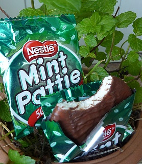 Mint Pattie - 20 gram